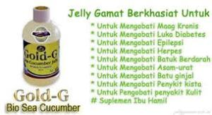 obat herbal hepatitis b
